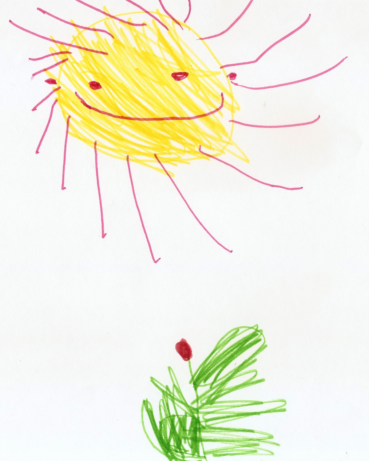 1200x1498 Tulip And Sun. Children Drawing. Children's Drawings