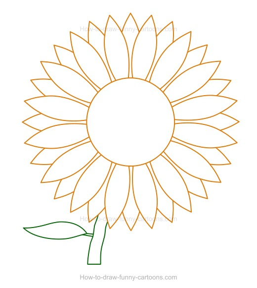 520x581 How To Draw A Sunflower