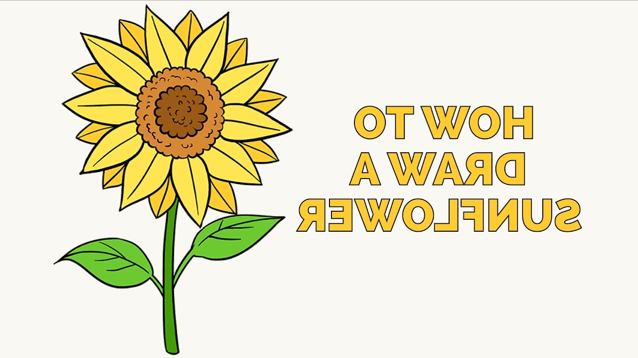 1280x720 Cartoon Sunflower 006easy Drawing