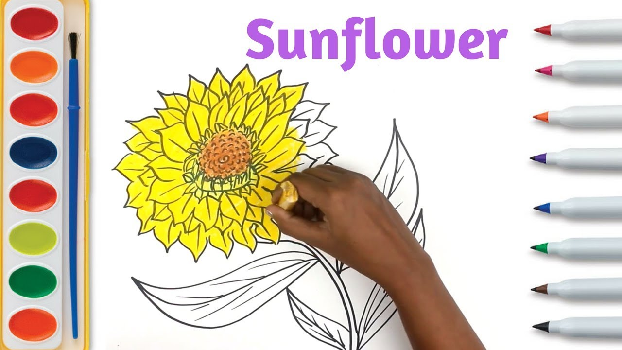 1280x720 Sunflower Drawing Tutorial Sketching Flower On Paper