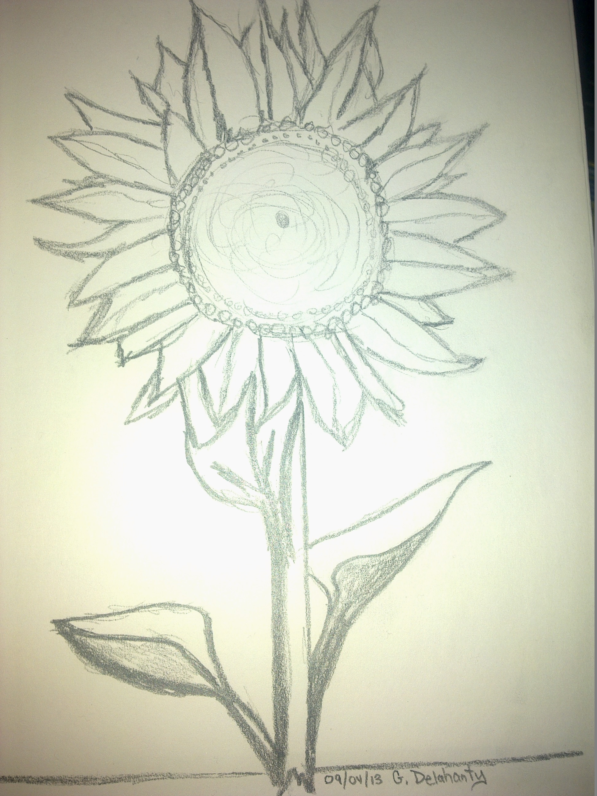 Sunflower Pencil Drawing At Getdrawings Com Free For Personal Use