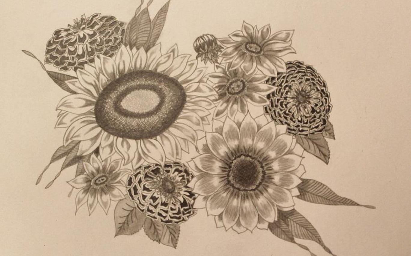 1368x855 Sunflowers Drawing By Jodi Harvey Brown Gardening Flower