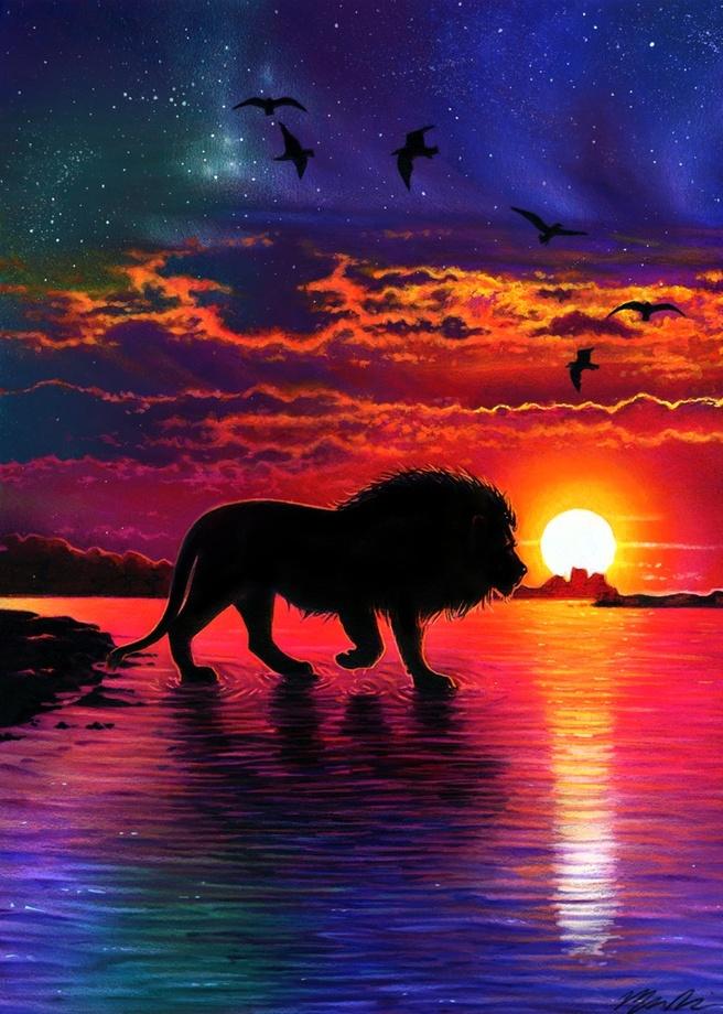 656x920 Sunset Lion Drawing , An Art Print By Morgan Davidson