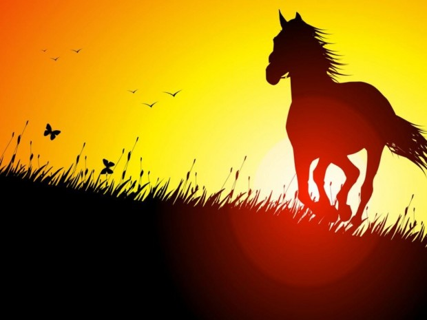 620x465 Horse And Sunset Drawing Animals Wallpapers And Stock Photos