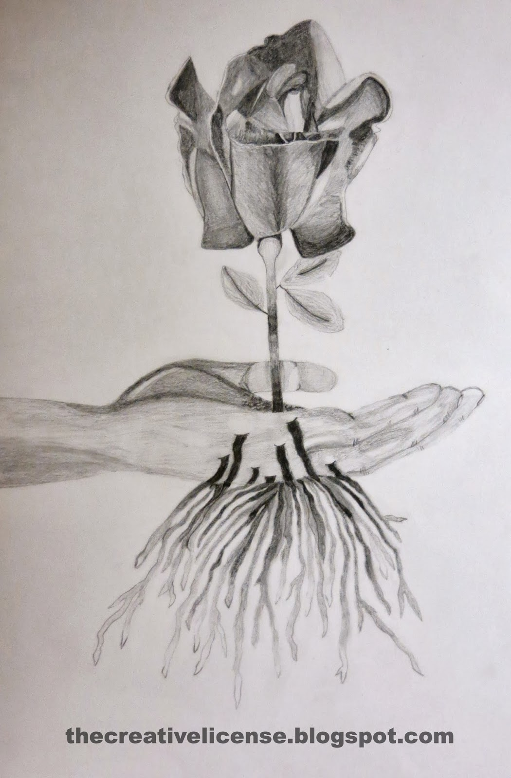 1050x1600 The Creative License Surrealistic Shaded Drawings Drawing