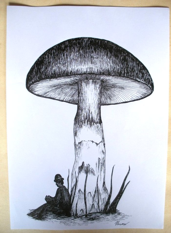700x952 Unique Ink Drawing Ideas