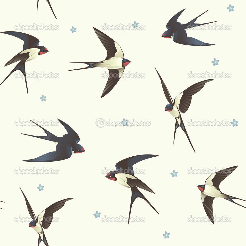 1024x1024 Best Photos Of Flying Swallow Template
