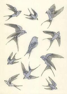 236x330 Flying Swallow Drawing Swallow Drawings Embroidery Tattoo