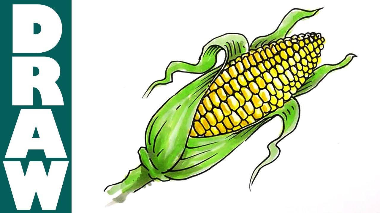 1280x720 How To Draw A Corn Cob