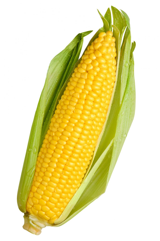 1000x1507 Roasting Corn The Sticky Way The Odd Pantry