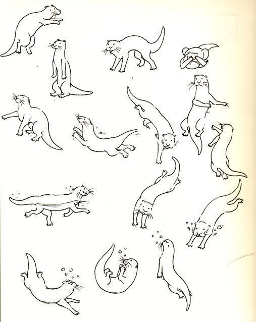 507x638 How To Draw Otters