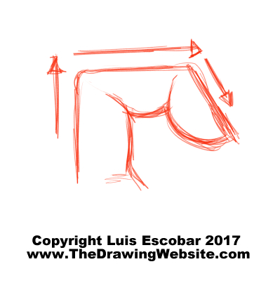 399x403 Are You A Drawing Beginner Start Here. The Drawing Website