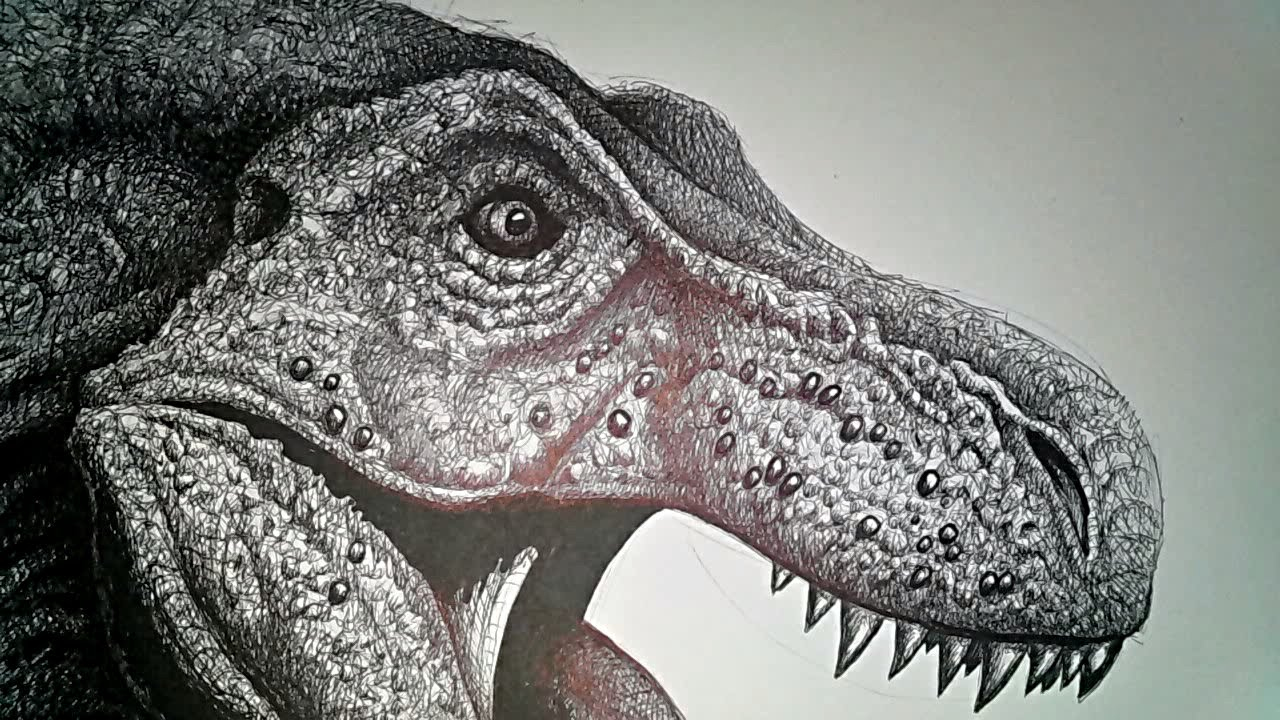 1280x720 Drawing T. Rex. Drawing The Legendary Dinosaur!
