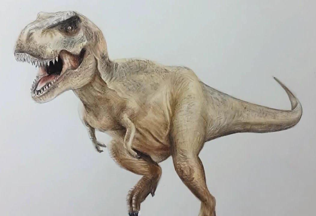 1052x720 How I Draw Tyrannosaurus Rex Dibujando Tiranosaurio Rex