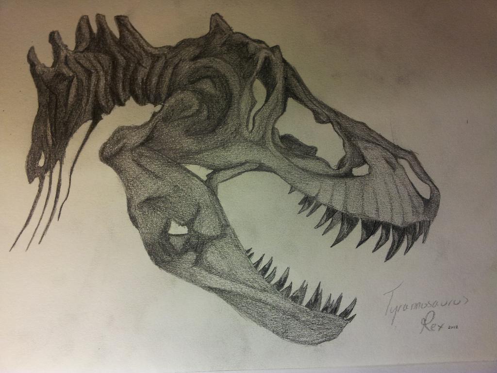 1024x768 T.rex Skull Raawwrrr Chris Cook
