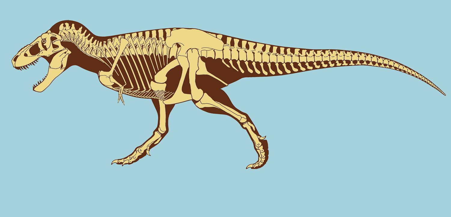 1500x722 Controversial T. Rex Soft Tissue Find Finally Explained