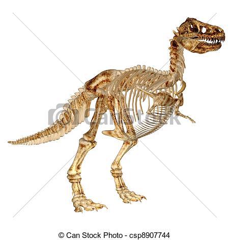 450x470 Tyrannosaurus Rex's Skeleton. Illustration Of A Drawing