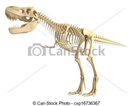 450x357 Tyrannosaurus T Rex Skeleton Stock Illustration