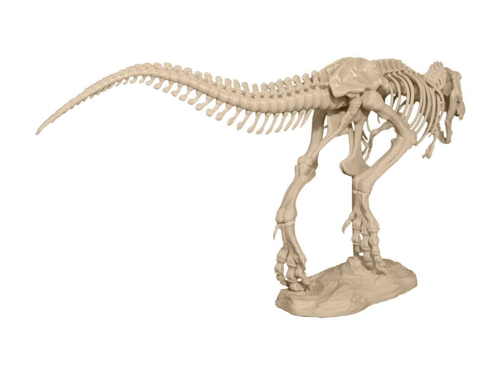 1024x768 You Can Now 3d Print Your Own 79 Piece T Rex Skeleton Amp Remix It