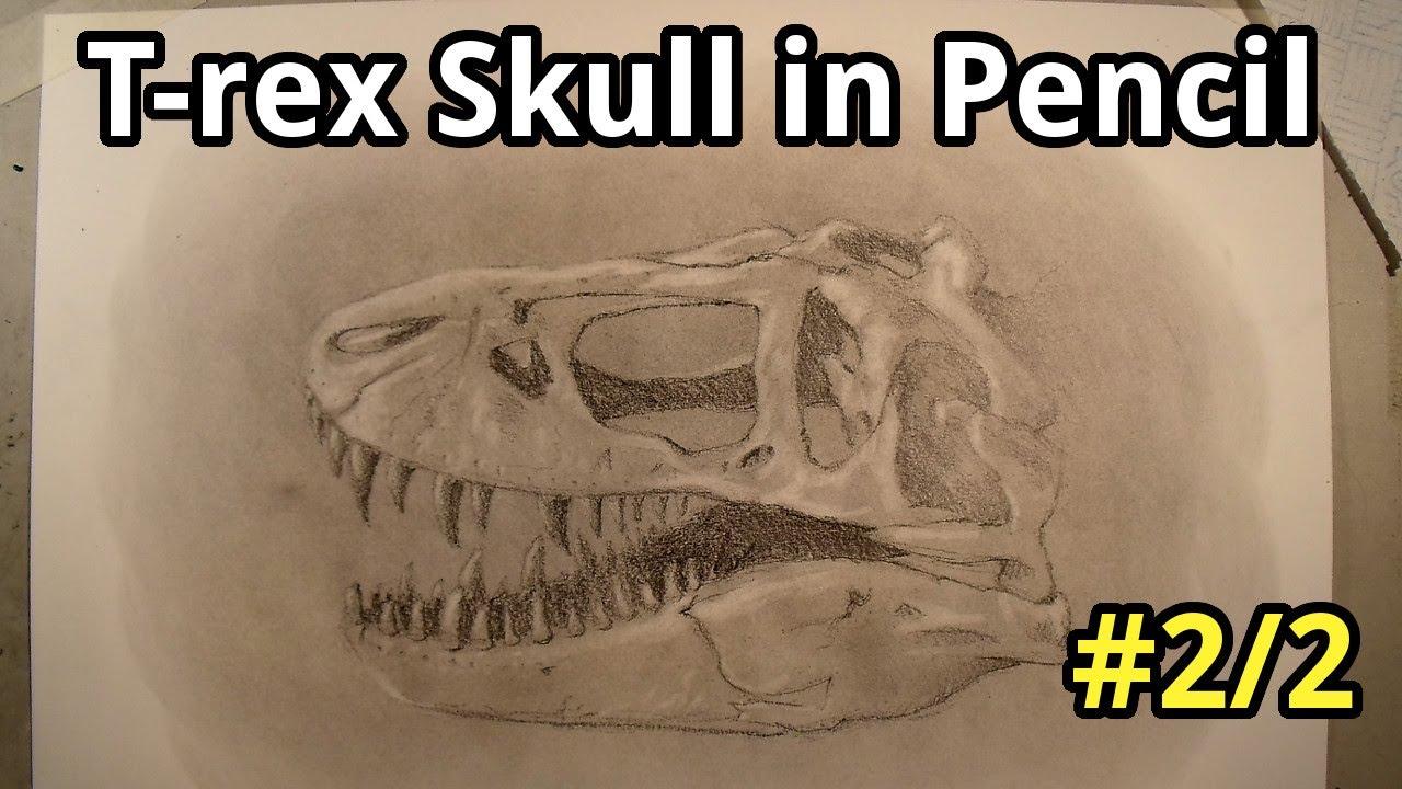 1280x720 Drawing A T Rex Skull In Pencil