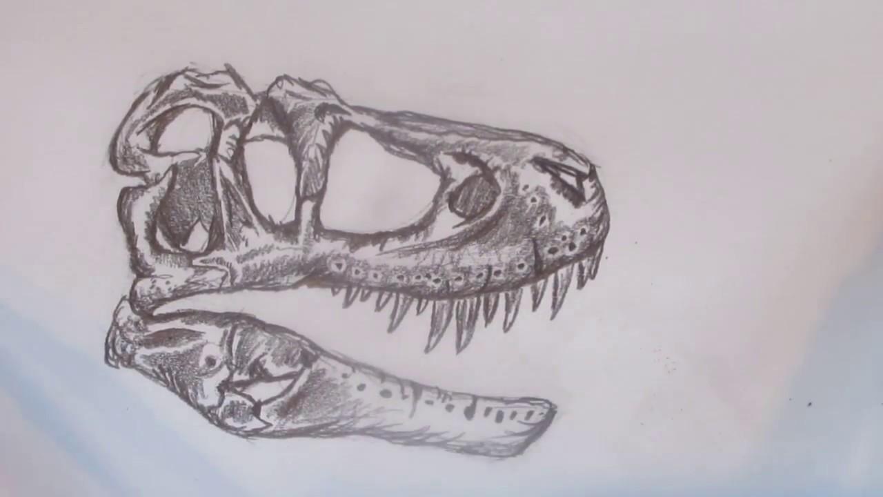 1280x720 Speed Drawing A T. Rex Skull