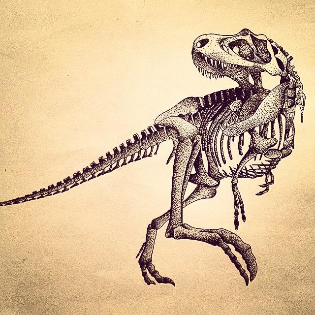 640x640 T Rex Skeleton Drawing