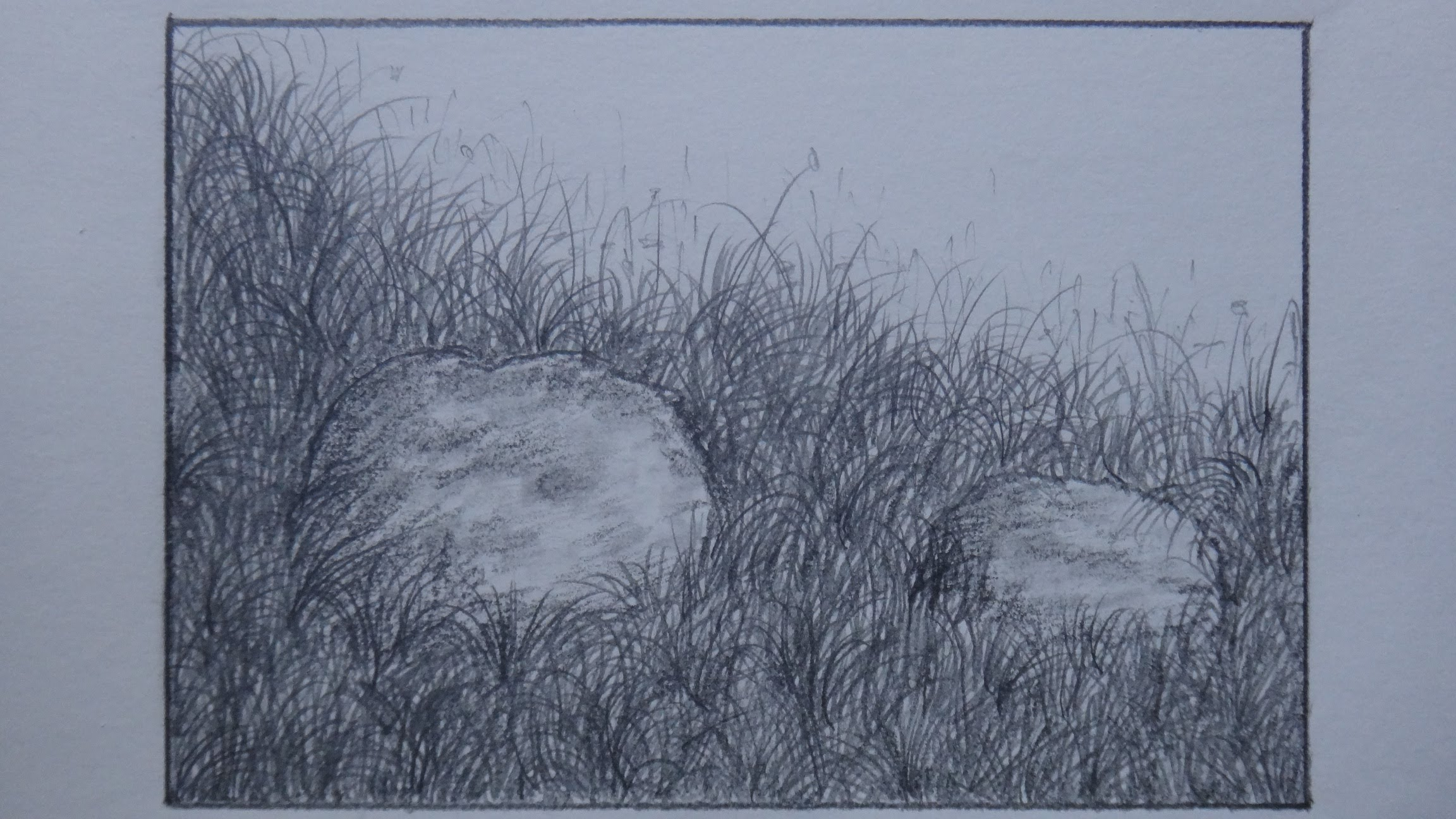 2304x1296 How To Draw Grass Using Pencil For Landscape