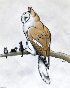 236x295 Image Result For Barn Owl Feet And Talons Mythical Creatures