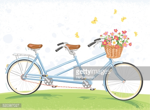 485x354 Vector Art Blue Tandem Bicycle Drawing With Flower Basket