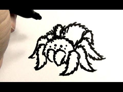 480x360 How To Draw A Tarantula