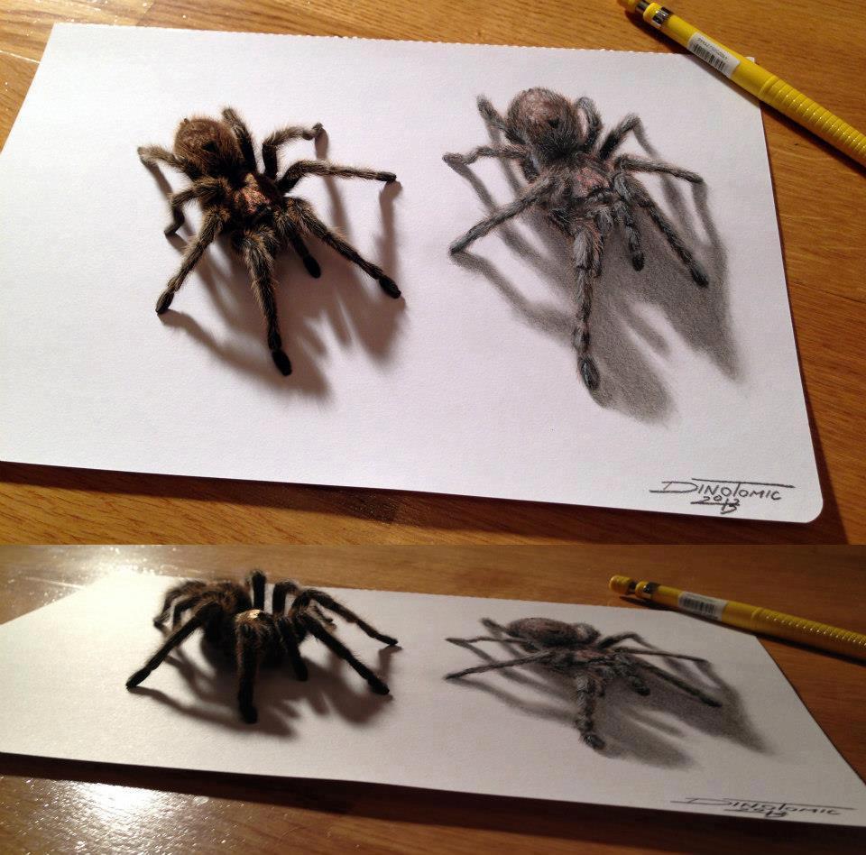 960x948 Tarantula Pencil Drawing By Artist Dino Tomic Art Is Rad