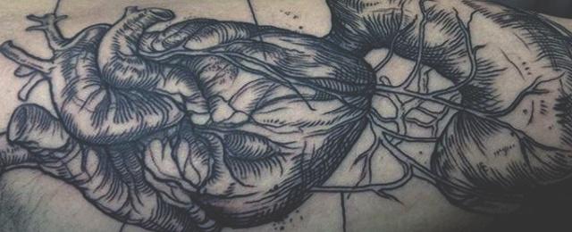 640x260 90 Anatomical Heart Tattoo Designs For Men