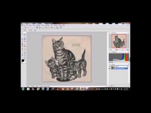 480x360 Free Software For Tattooing Tattoo University