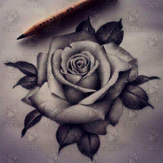 565x565 Rose Tatoo Healthy Choices Tattoo, Tatoos And Tatting