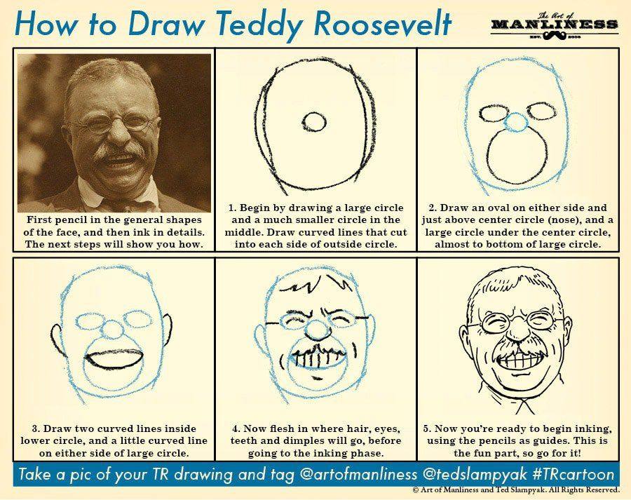 900x713 How To Draw Teddy Roosevelt Roosevelt, Learning And Social Studies