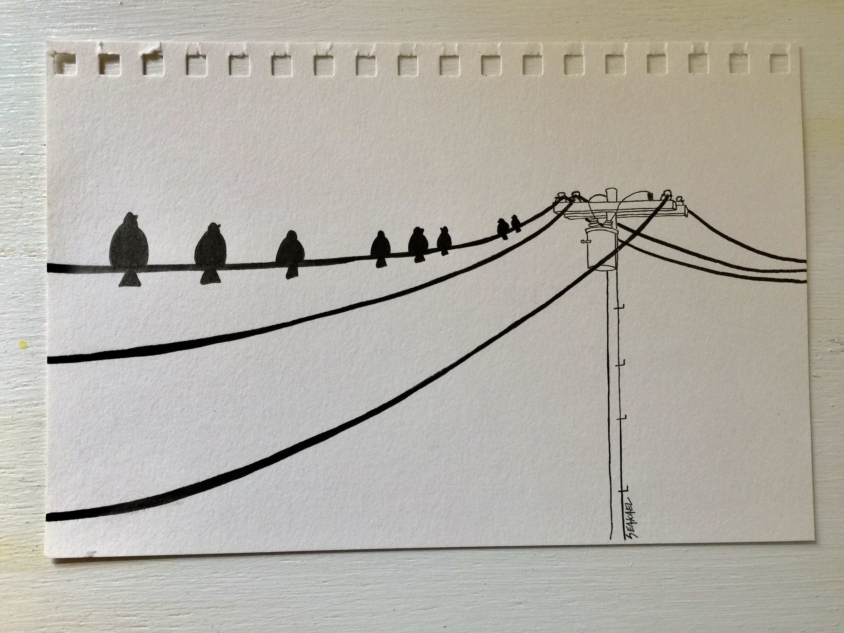 3264x2448 Birds On A Wire Sketch. Telephone Pole. Telephone Wire. Draw