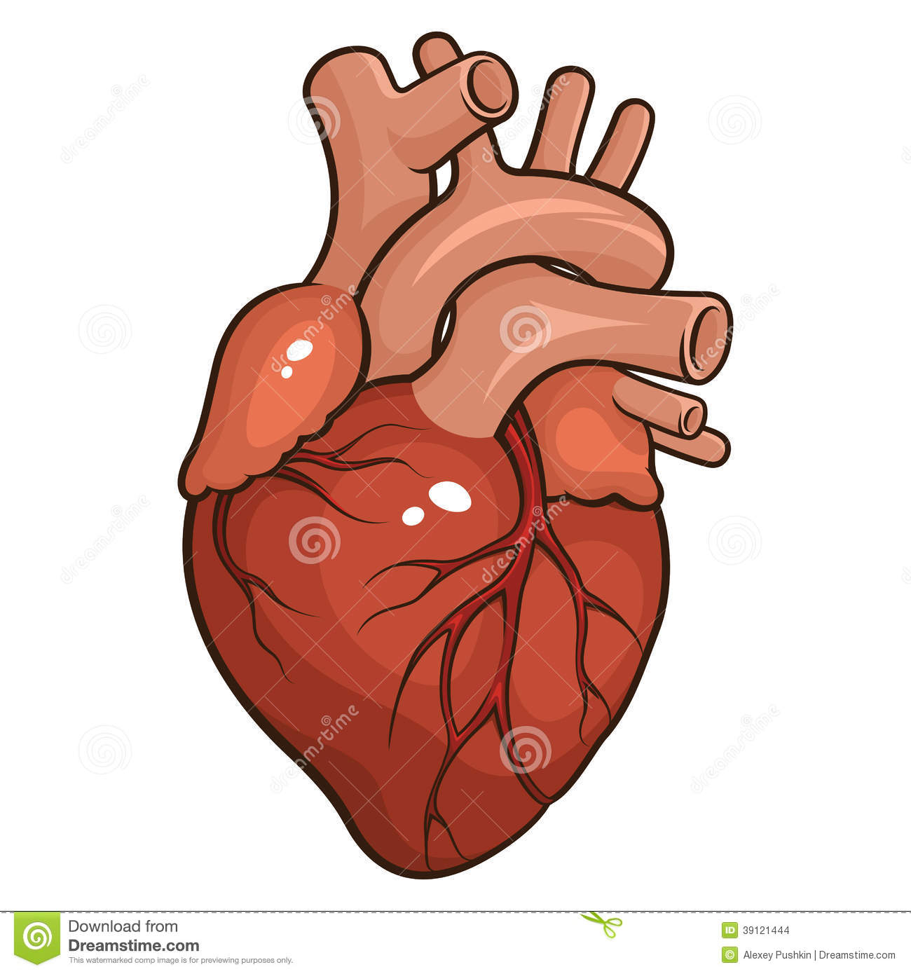 1300x1390 Human Heart Drawing Simple Human Heart Stock Vector