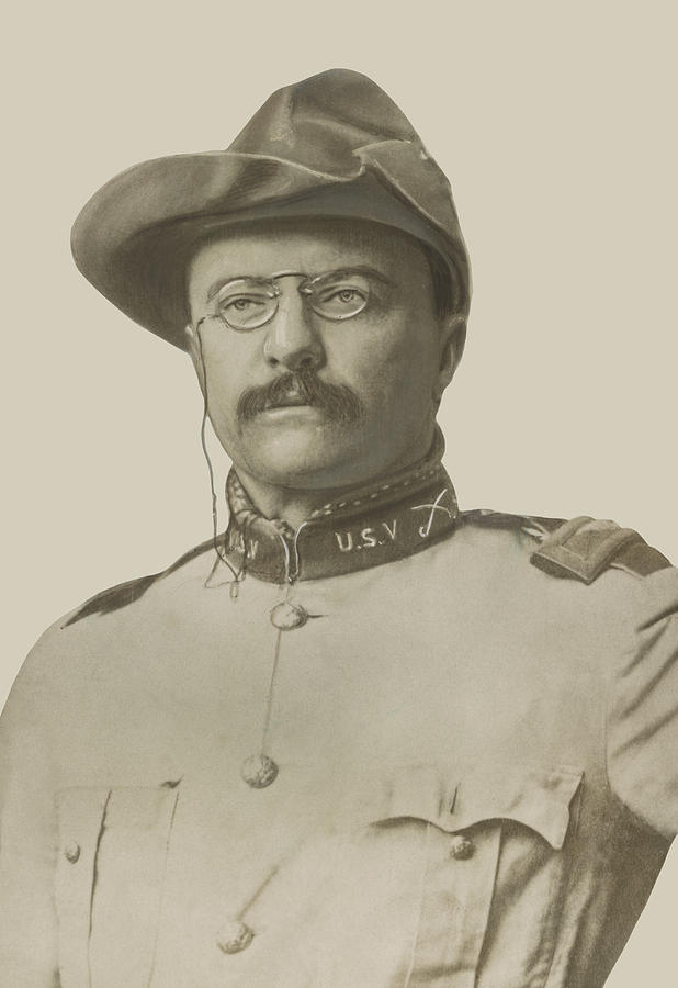 618x900 Colonel Theodore Roosevelt Drawing By War Is Hell Store