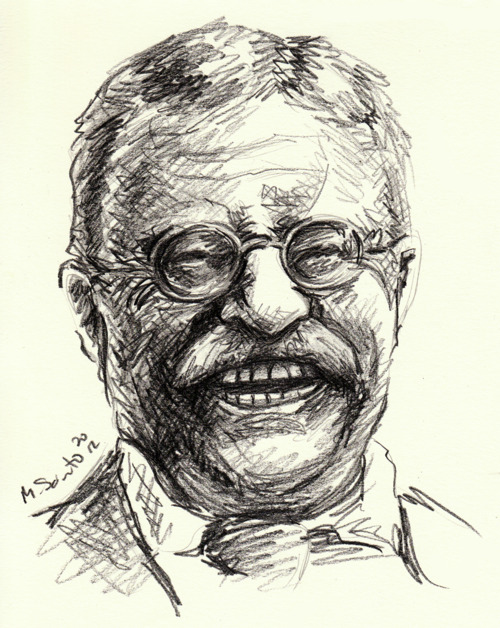500x628 Illustrations By M. Sciuto Teddy Roosevelt