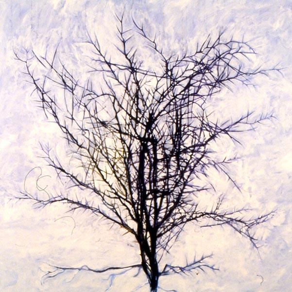 601x600 Belinda Broughton Illustration, Art N Poetry (By Belinda Broughton)