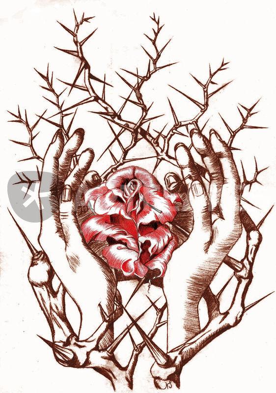 562x800 Rose Hands Twocolor Thornbush Digital Art Art Prints