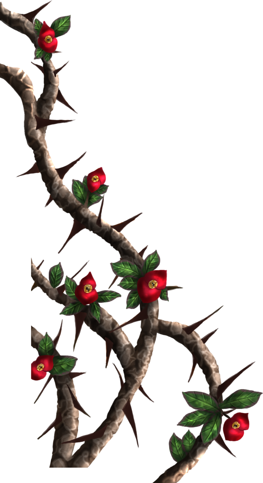 900x1650 Thorn Vines Crown Of Thorns