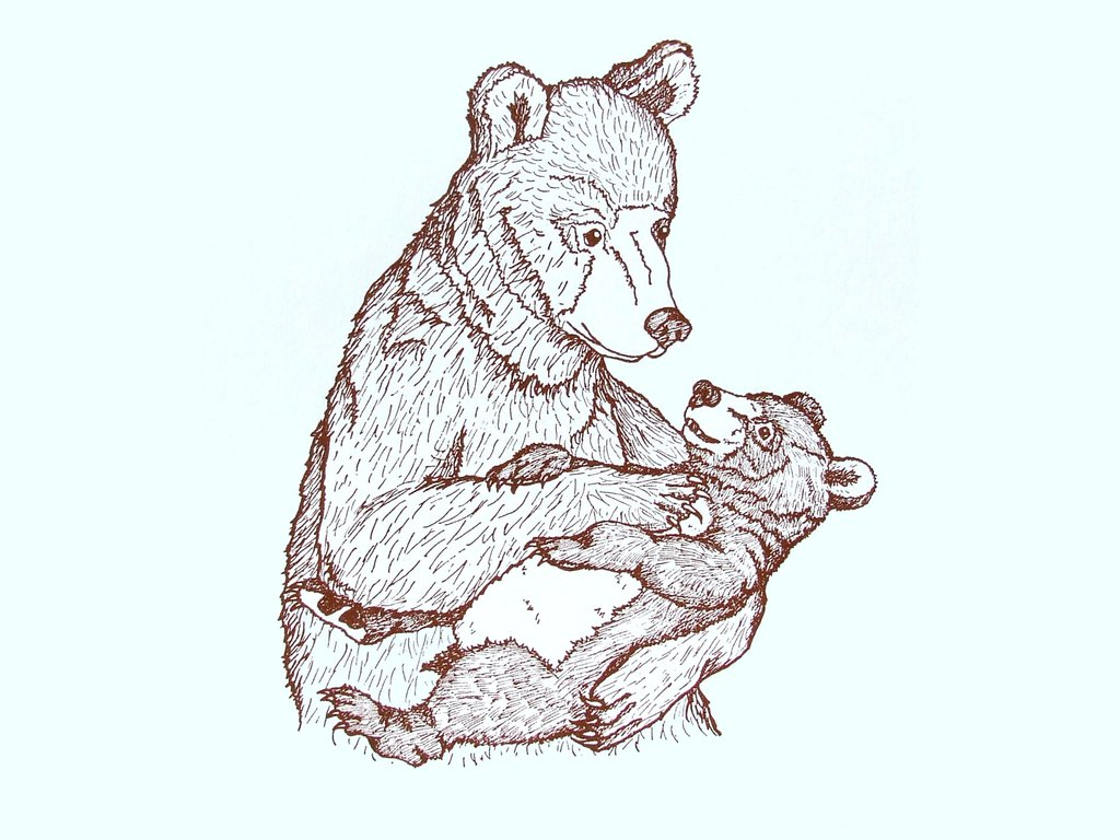 1024x768 Mummy And Baby Bear Print Three Bears Prints