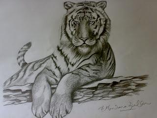 320x240 Pencil Sketching