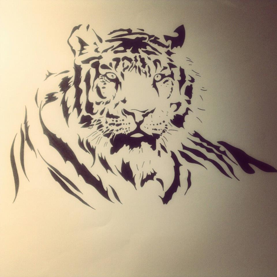 960x960 Tiger Claw Marks