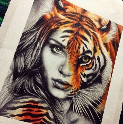 500x505 Grafika Tiger Art And Drawing Pinterest