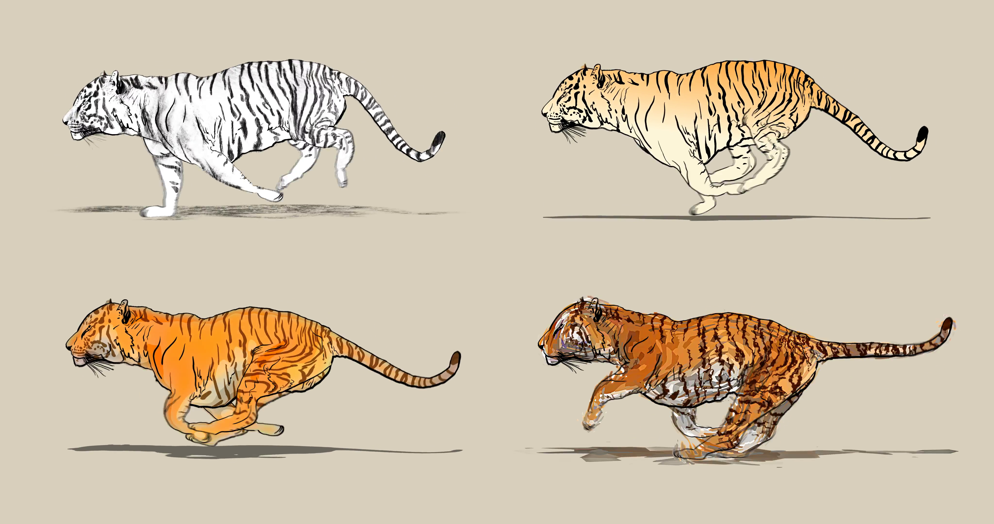 4096x2160 Cartoon Tiger Running. Four Different Drawing Style Pencil