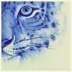 236x236 This Man Is Really Very Good At Drawing With A Ballpoint Pen