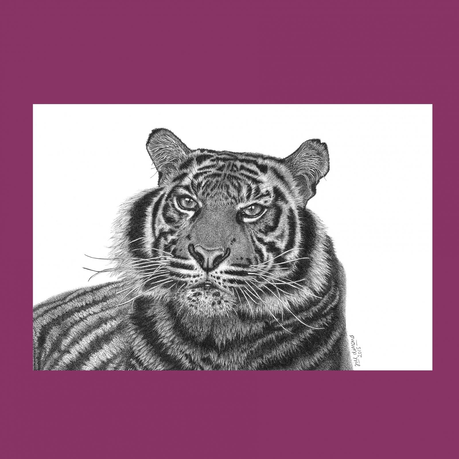 1600x1600 Tiger Canvas Wall Art Print