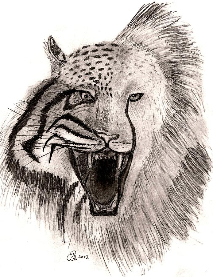 694x900 Feline Roar Drawing By Gail Schmiedlin